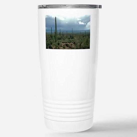 Arizona Desert and Cact Stainless Steel Travel Mug