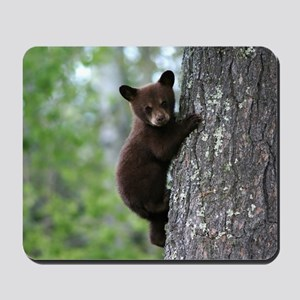 Bear Cub Climbing a Tree Mousepad