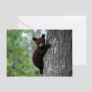 Bear Cub Climbing a Tree Greeting Card