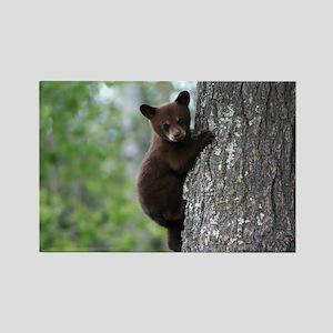 Bear Cub Climbing a Tree Rectangle Magnet