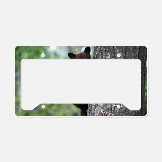 Bear Cub Climbing a Tree License Plate Holder