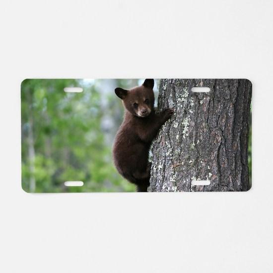 Bear Cub Climbing a Tree Aluminum License Plate