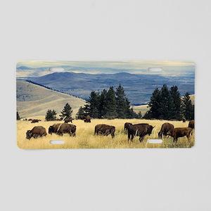 National Parks Bison Herd Aluminum License Plate