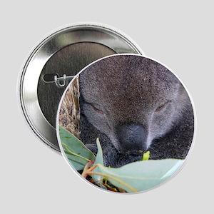 Koala Christmas Button