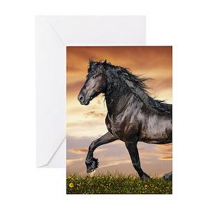 Horse greeting cards cafepress m4hsunfo