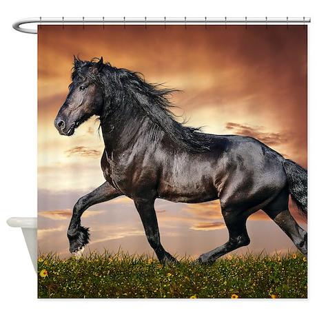 Beautiful Black Horse Shower Curtain