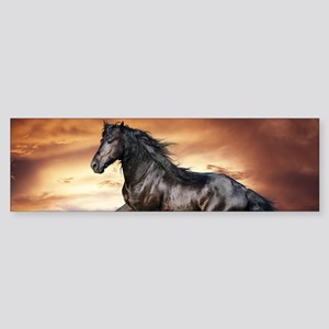 Beautiful Black Horse Bumper Sticker