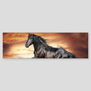 Beautiful Black Horse Bumper Sticker