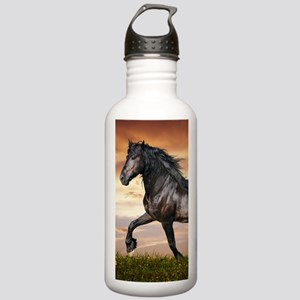 Beautiful Black Horse Water Bottle