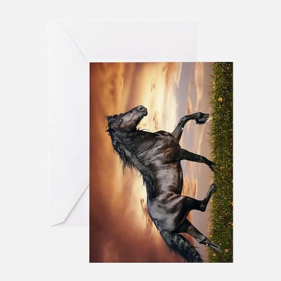 Beautiful Black Horse Greeting Card