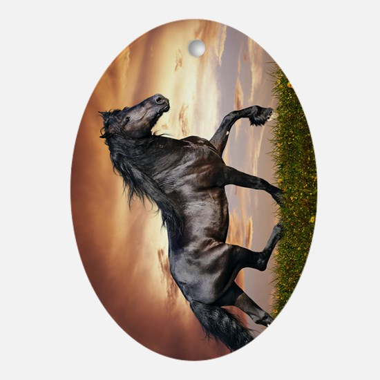 Beautiful Black Horse Oval Ornament
