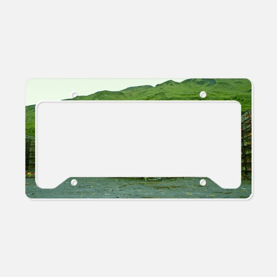 Stack of Commercial Crab Pots License Plate Holder