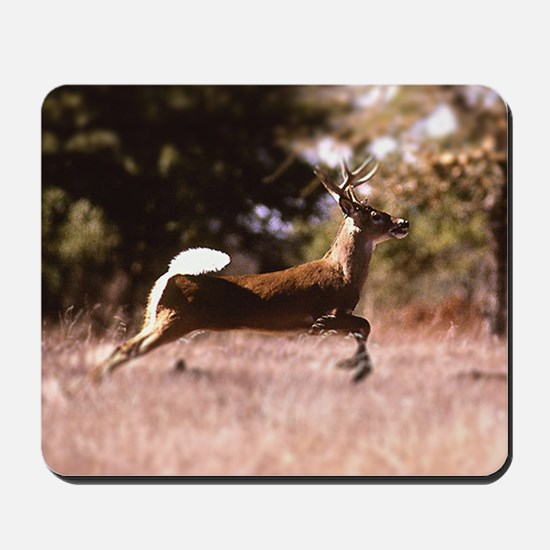 White-Tail Deer Running  Mousepad