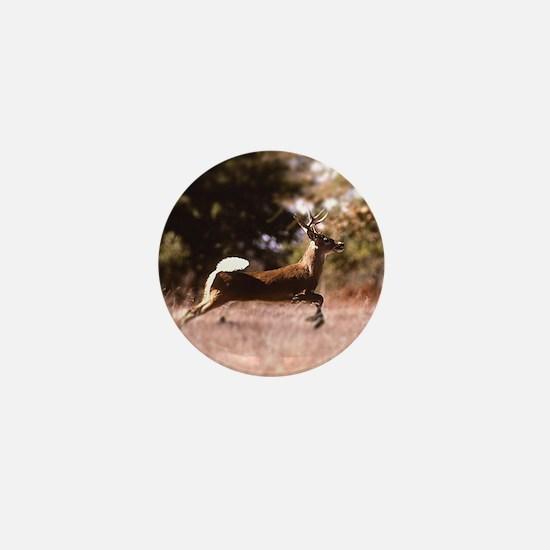 White-Tail Deer Running  Mini Button