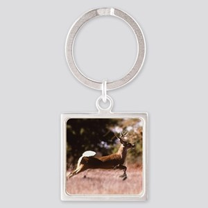 White-Tail Deer Running  Square Keychain