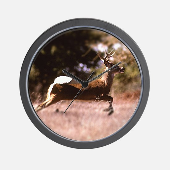 White-Tail Deer Running  Wall Clock