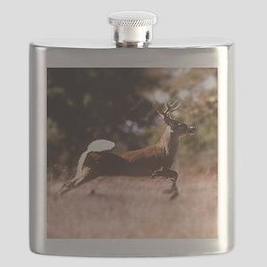 White-Tail Deer Running  Flask