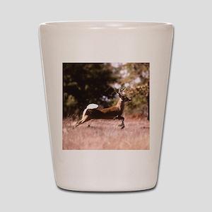 White-Tail Deer Running  Shot Glass