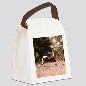 White-Tail Deer Running  Canvas Lunch Bag