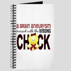 Brain Aneurysm MessedWithWrongChick1 Journal