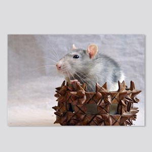Little Rat in Basket Postcards (Package of 8)