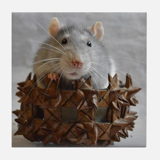 Little Rat in Basket Tile Coaster