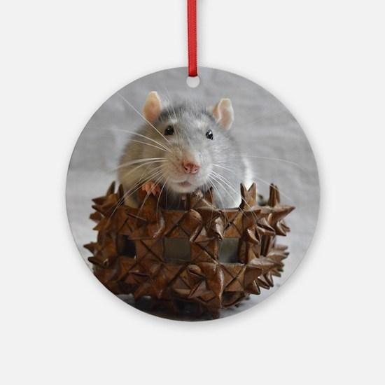 Little Rat in Basket Ornament (Round)