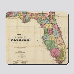 Vintage Map of Florida (1870) Mousepad