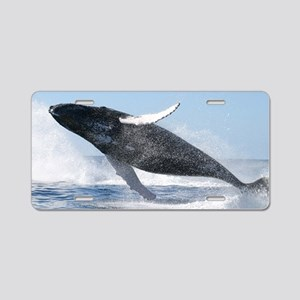 Humpback Whale Jumping High Aluminum License Plate