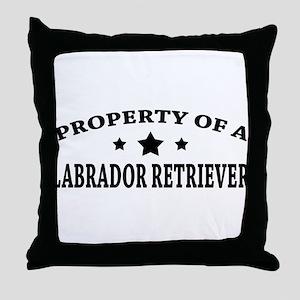 LabProperty Throw Pillow