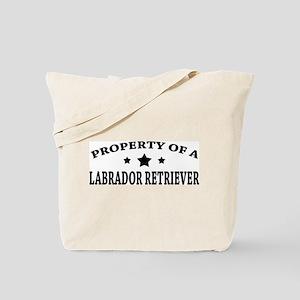 LabProperty Tote Bag