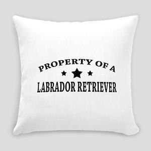 LabProperty Everyday Pillow