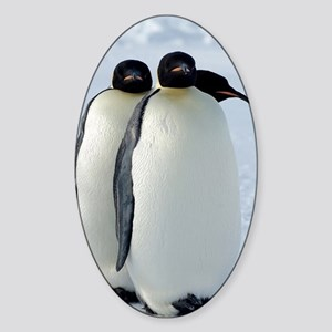 Emperor Penguins Huddled Sticker (Oval)