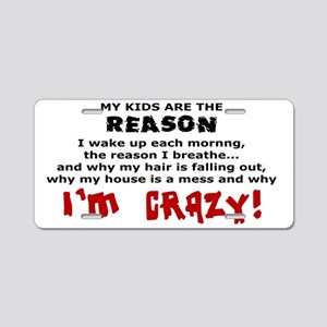 MY KIDS ARE THE REASON... Aluminum License Plate