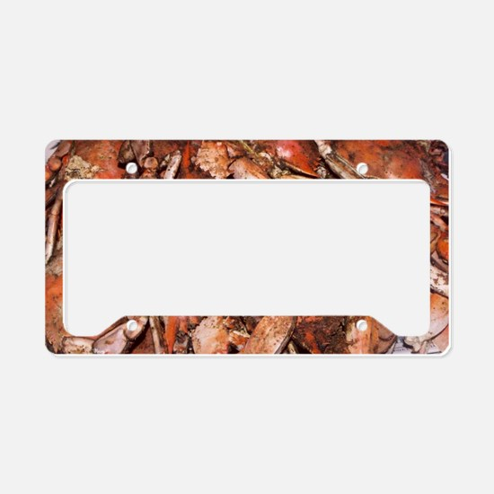 Crab Feast License Plate Holder