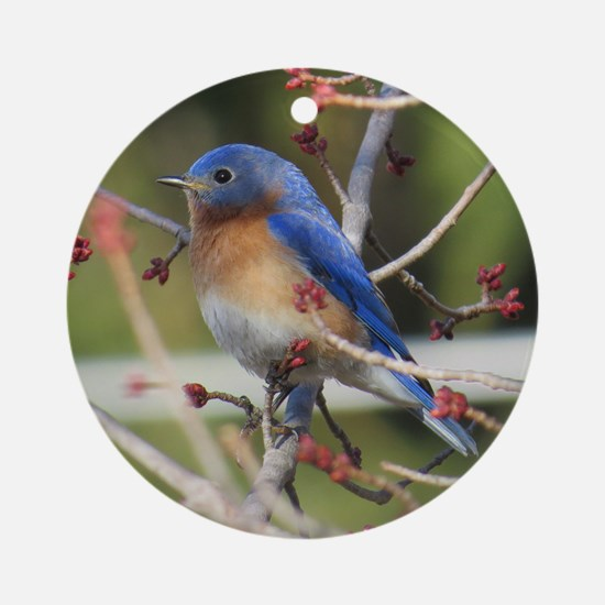 Red Bud Bluebird Ornament (Round)