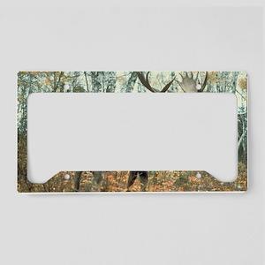 Huge Moose License Plate Holder