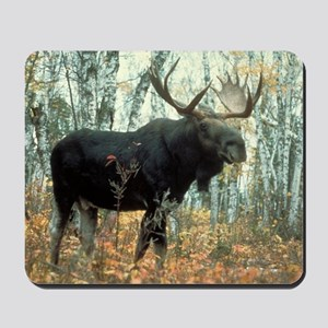 Huge Moose Mousepad