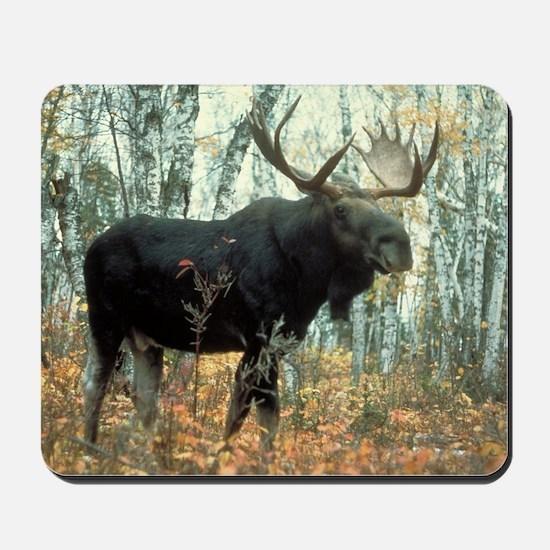 Huge Moose Mousepad