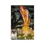 Fairies & Pug Rectangle Magnet (10 pack)