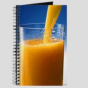 A Glass of Orange Juice Journal