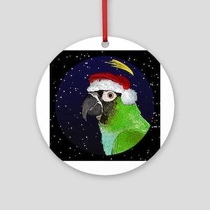 Christmas Night Nanday Conure Christmas Ornament