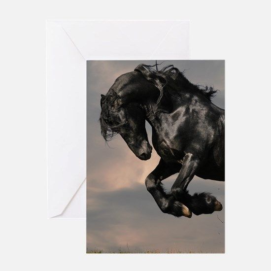 Beautiful Black Horse Greeting Cards