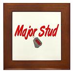USCG Major Stud Framed Tile