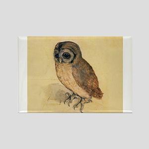 Albrecht Durer Little Owl Magnets