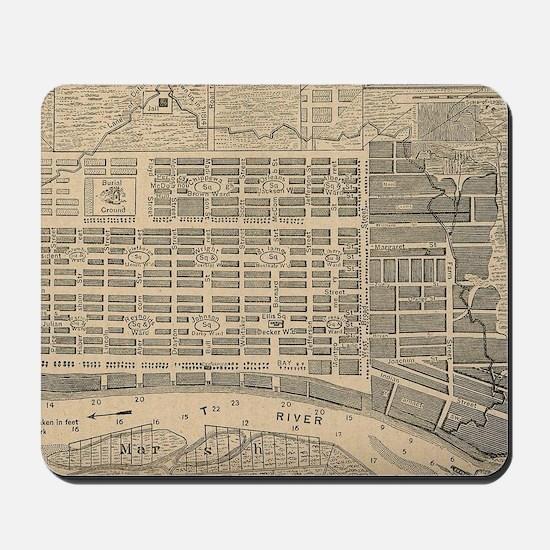 Vintage Map of Savannah Georgia (1818) Mousepad
