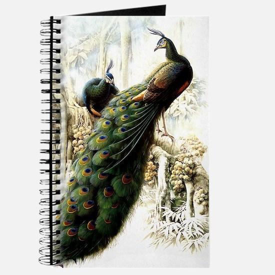 Resting Peacocks Journal
