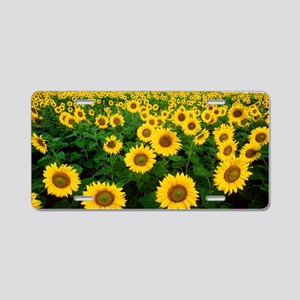 Field of Sunflowers Aluminum License Plate