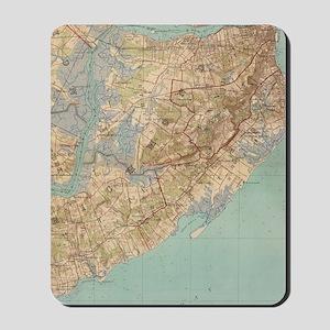 Vintage Map of Staten Island (1891) Mousepad
