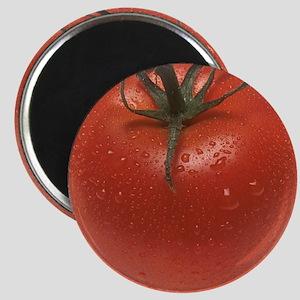 Fresh Tomato Magnet